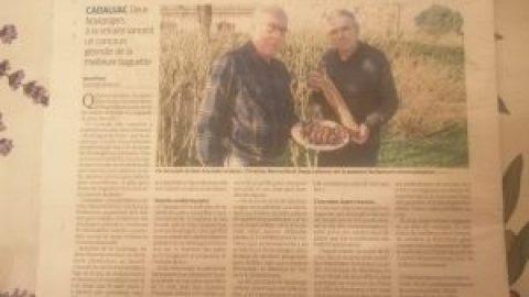 ARTICLE Sud-Ouest CONCOURS BAGUETTES